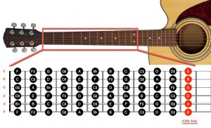 نام سیم های گیتار