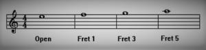 آموزش گیتار آموزش تنبک آموزش دف آموزش بیت باکس